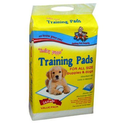- Köpekler İçin Tuvalet Alıştırma Pedi 60X60 24'lü