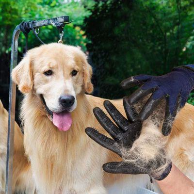 Diğer - Pet Gloves Kedi Köpek Tüy Toplama Eldiveni ( Sağ ve Sol El ) (1)