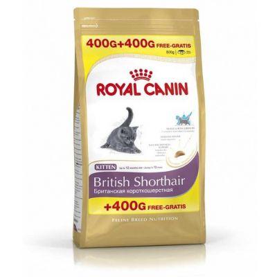 Royal Canin - Royal Canin Yavru British Shorthair Kedi Maması 400 + 400 Gr