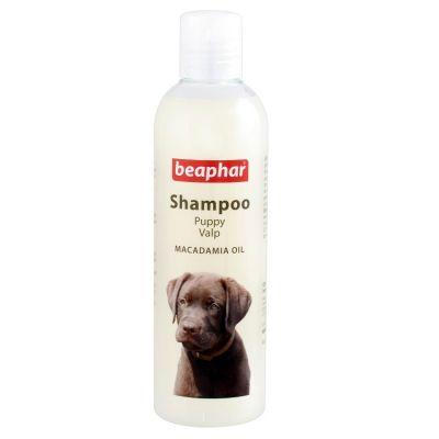 Beaphar - Beaphar Beaphar Glossy Coat Yavru Köpek Şampuanı Parlak Tüy 25 ML