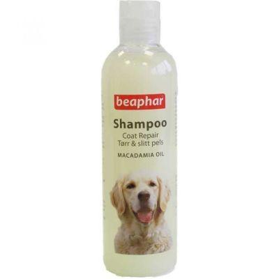 Beaphar - Beaphar Macedemia Özlü Kıtık Çözücü Köpek Şampuanı 250 ml