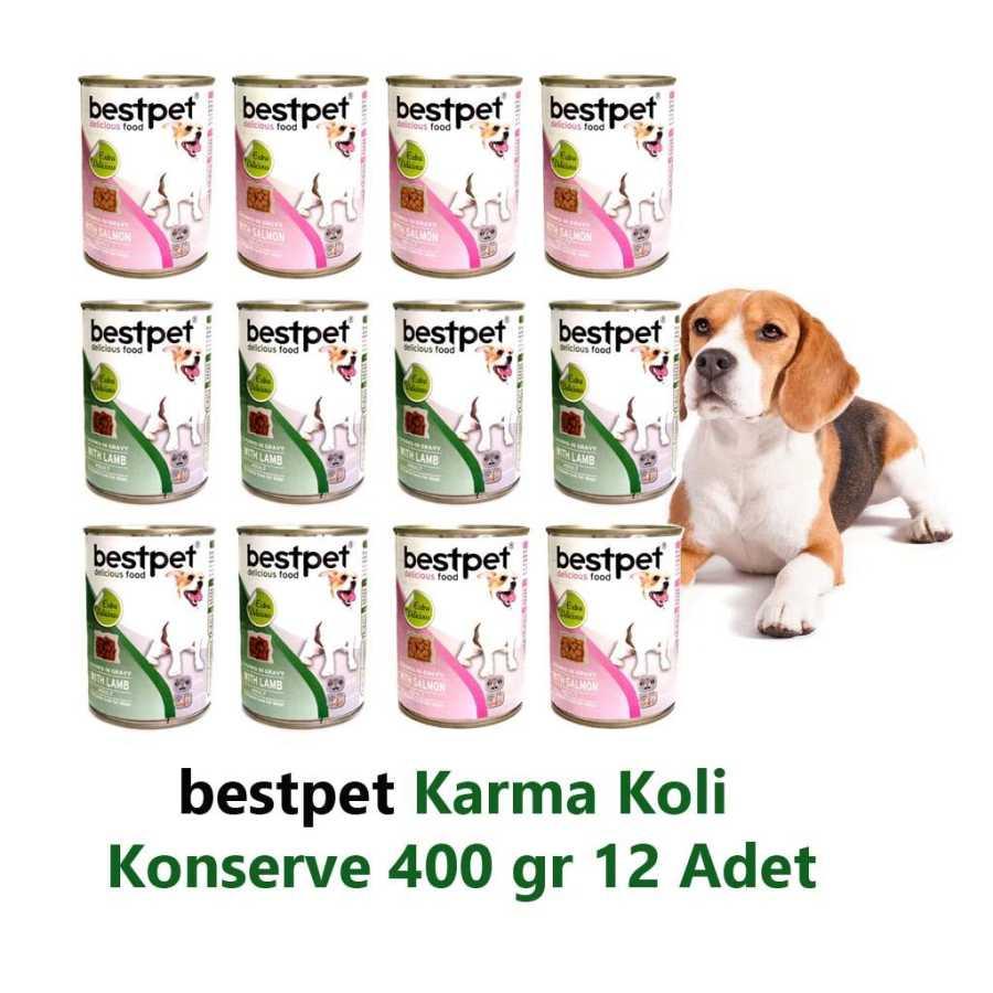 Bestpet Karma Koli Köpek Konservesi 400 gr 12 Adet