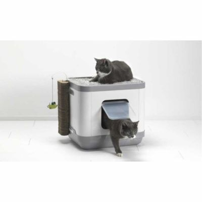 Moderna - Moderna Cat Consept (Yatak-Tuvalet-Tırmalama-Oyun) 40x48x43 CM