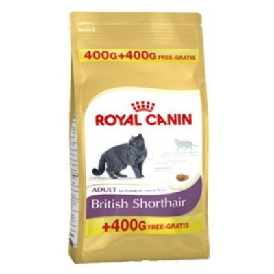 Royal Canin - Royal Canin British Shorthair Kedi Maması 400+400 Gr